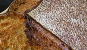 Panadera-recia-y-masa-madre-espelta-Marzo-2011-030